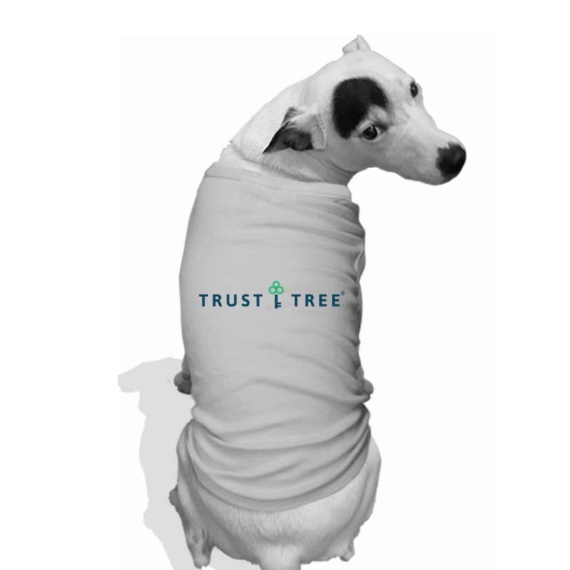 puppy in a trust tree shirt